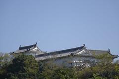 (ddsnet) Tags: travel japan sony cybershot  nippon  nihon backpackers      rx10 hygoken