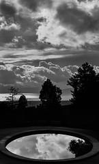 storm reflections (pbo31) Tags: california winter sky blackandwhite black reflection pool northerncalifornia oakland nikon december bayarea eastbay d800 2014 joaquinmillerpark