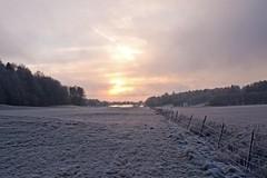 Par for the course (Henrik Glette) Tags: light ice norway stfold larkollen