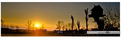 """CHRISTMAS 2014-37889-3 (Nick and Karen Munroe) Tags: flowers trees winter sunset sky sun beauty silhouette clouds landscape photography golden frozen pond nikon professional foliage willow 28 goldensunset weepingwillow f28 professionalphotographer sunsetting willowtree settingsun goldensky """"nikon 1424 """"photography nikon1424f28 munroephotography d7000 nikond7000 d7000nikon munroedesignsphotography munroedesigns karenick karenick23 nickmunroe nickandkarenmunroe munroenick karenandnickmunroe karenmunroe"""