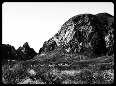 Big Bend National Park, Texas in Black & White