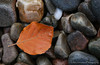 On The Rocks (ajp~) Tags: autumn canon scotland perthshire pebbles riverbank pitlochry 6d rivergarry beechleaf canon70300mmf456l alanjohnstone wwwalanjohnstonephotographycom