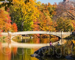 Bow Bridge over The Lake, Central Park, New York City (jag9889) Tags: park nyc newyorkcity bridge autumn usa ny newyork reflection tree fall colors river landscape crossing unitedstates centralpark manhattan unitedstatesofamerica landmark foliage cp waterway 2014 nycparks archbridge k616 jag9889 20141110