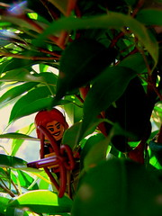 Suzanne Collins: Hidden in the Trees (Pickman's Paintbrush) Tags: trees plants tree book lego books writers writer minifigs authors suzannecollins hungergames legography katnisseverdeen legoauthor legoauthors legowriters legowriter