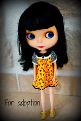 For adoption Blythe All Gold One SOLD