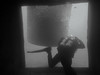 NDAC 2014 (bowsawblogger) Tags: uk man underwater scuba rubber latex bsac scubadiving chepstow drysuit wetsuit ndac