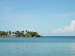 Cebolleta (Alveart) Tags: island colombia bolivar cordoba caribbean isla caribe puertolimon puntaarenas suramrica lationamerica islafuerte alveart luisalveart cebolletaislafuerte