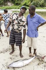 Fishing is a key economic activity in Haiti (UNEP Disasters & Conflicts) Tags: haiti csi cotesudinitiative southdepartment environment un sdg mdg drr renewableenergy sustainabledevelopment greeneconomy pcdmb disasters conflicts portsalut disasterriskreduction climatechange unep unenvironment