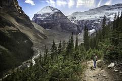 Panoramic View of Grandiosity (mnenson) Tags: canada mountains hiking trails alberta glaciers lakelouise nationalparks banffnationalpark