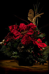 Center Piece (Nikon Nutter 2009) Tags: red green leaves butterfly gold berries center piece cones