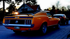 Mach1 1970. (Papa Razzi1) Tags: ford spring may ponies 1970 mustang mach1 2016 2011 7070 gtcs 125365