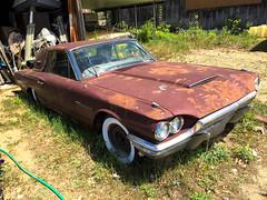 Good Chrome (votsek) Tags: ford abandoned vintage us rust unitedstates newhampshire chrome thunderbird 1964 nashua 2016