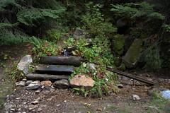 Ye Olde Watering Hole (jimgspokane) Tags: camping otw idahostate elkcitywagonroad elkcityidahostate