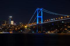 IMGP2685-2 (UmitCukurel) Tags: nightphotography sea night cat turkey puente mar pentax turkiye istanbul gato turquia bogazici bosphorus kedi kizkulesi maidentower k3ii
