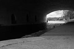 Rideau Canal (nacim.khodja) Tags: blackandwhite canada heritage tourism landscape canal nikon cloudy outdoor ottawa parliamenthill rideau patrimoine streetphotographie d7100