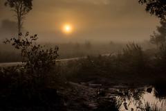 Lost Worlds (elizabethstanbury15) Tags: mist sunrise broadwaterwarren