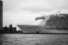 Harmony of the Seas (www.margosmit.com) Tags: blackandwhite canon blackwhite rotterdam harmony cruiseship maas hotelnewyork cruiseterminal cruiseschip canoneos100d harmonyoftheseas