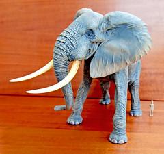 African Elephant  Megasofubi  MSA-007 (RobinGoodfellow_(m)) Tags: elephant african elefante kaiyodo africano msa007 megasofubi