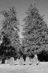 DSC_0022 (Michael Kerick) Tags: oldsouthburyingground cemetery graveyard bolton ma massachusetts newengland