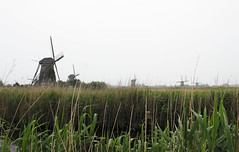The Mills of Kinderdijk, Holland (meganejay) Tags: travel holland netherlands europe windmills study abroad mills kinderdijk