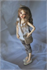RRD's Sweet Cookie Bag (Red Ribboned Dolls) Tags: bag miniature redribbon 14 chloe bjd fairyland abjd auri msd accessory mnf minifee redribboneddolls
