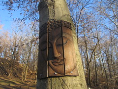 Buddha of the woods 1, Druid Hill Park (Zombie37) Tags: wood city blue trees portrait urban brown tree art nature face forest garden outside outdoors woods quiet place natural expression buddha bare branches maryland baltimore carving hidden serenity surprise trunk serene panels sights closedeyes druidhill druidhillpark woodonwood