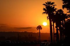 Cali sunset (Nathan_A_Jones) Tags: california sunset nikon sandiego palmtrees coronado nikkor8518d