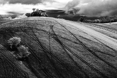 Collina (luporosso) Tags: nature natura naturaleza naturalmente nikond300s nikon country countryside collina hill monocrome monochrome bianconero biancoenero blackwhite blackandwhite blancoynegro noiretblanc bn bw scorcio scorci marche italia italy