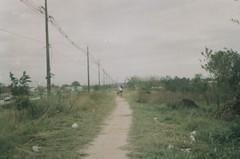 Stay on the trail. (larissanunesdealbuquerque) Tags: film nature field rio riodejaneiro analog lomography woods kodak trail biking analogue analogphotography kodakfilm filmphotography analogphotograph filmphotograph