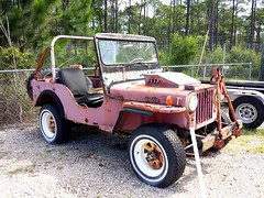 Wild Willy (Dave* Seven One) Tags: rot classic vintage project fun rust jeep rusty fl pcb willys rotted willysjeep