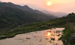 Sunset over rice terraces in Sapa (Vietnam) (Linas G) Tags: sunset mountain reflection dusk hiking vietnam sapa riceterraces