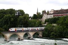 SBB RABe 514 026-1 Schloss Laufen Rheinfall (michaelgoll777) Tags: sbb sbahn rheinfall rabe514