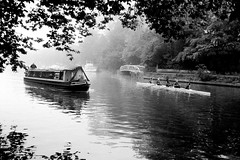 Thames (ExpectGrain) Tags: thames river ilfordhp5 rowing hp5 riverthames ricoh narrowboat rowingboat ricohff3