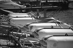 Pedal a Lugano (AmericanCowgirl95) Tags: lugano ticino switerland lake ceresio lakeoflugano summertime fun bw