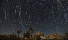 Star Trails With Meteors (Susan Colosimo) Tags: startrails starrysky stars astrophotography nightphotography nightsky nightscape desertenvironment desertlandscape desertatnight highdesert joshuatreenationalpark joshuatree polaris northstar