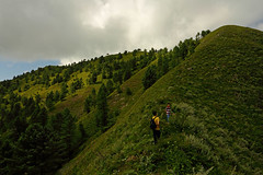 Miranjani: Ridge and summit (Shahid Durrani) Tags: miranjani nathiagali hike