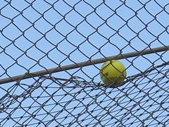 August 14, 2016 (11) (gaymay) Tags: california desert gay love riversidecounty coachellavalley cathedralcity softball bats balls gloves yellow rainbowgame