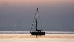 Daybreak atmosphere (MaiGoede) Tags: golden morningmood earlymorning fedderwardersiel nordsee northsea seascape ammeer meer ocean bremerhaven nikon