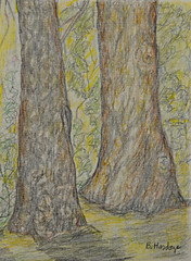 Trees (BKHagar *Kim*) Tags: bkhagar moms art artwork drawing scribble color pencil pencils bettyhardage artist