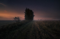 In the shadow of the valley. (Night photographs from Finland) Tags: finland valley fog misty dream mystical field road stars tree canon samyang colorful mika suutari night