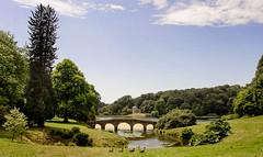An Afternoon Stroll (Ken Came) Tags: stourhead wiltshire nationaltrust nikon d7000 kencame ducks landscape bridge omot