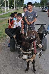 Usbekische Kinder mit Eselskarren II