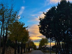 Sky (Marcosnr92) Tags: sunset landscape place cloudy horizon precious beatiful colourfull