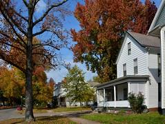 3 rd Street Autumn Colors (thoeflich) Tags: autumnleaves autumncolors marietta falllandscape autumnlandscape