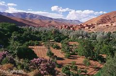 Boumalne Dades Landscape (davidarnoldi) Tags: mountain colour film landscape 50mm town nikon pass morocco f3 marruecos bereber dades boumalne otw gargantas