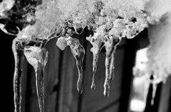 It's a cold, cold world baby (maddam) Tags: winter baby snow cold ice water frozen frosty d80