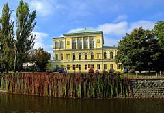 Yellow Mansion on Zofin (tubblesnap) Tags: building yellow architecture river island republic czech prague praha mansion vltava ostrov zofin slovansky