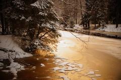When Rivers Look Like Roads (Sergei P. Zubkov) Tags: snow ice river december terijoki