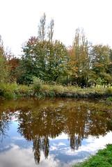 Carquefou, France (Tiphaine Rolland) Tags: trees plants france green nature water mirror eau upsidedown vert arbres miroir loire plantes paysdeloire carquefou loireatlantique