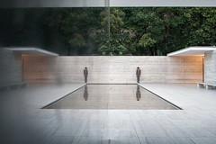 Mies (La T / Tiziana Nanni) Tags: barcelona travel portrait reflection architecture portraits luca miesvanderrohe riflessi ritratti ritratto architettura barcellona riflesso geometrie d300 manportrait iamyou